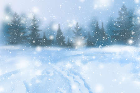 Winter background of snow and frost with free space for your decoration. Christmas background with fir trees and blurred bokeh. Winter landscape