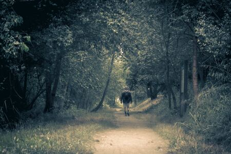 a hiking man walking away along a path in the woods in Sils wetland in Girona