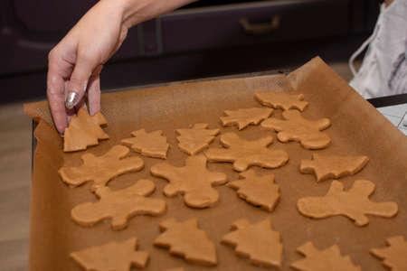 female hands spread Christmas cookies on a baking sheet to bake. Selective focus.