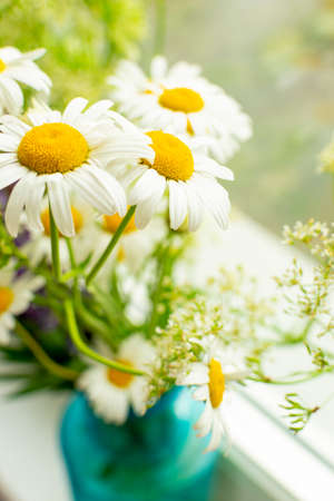 Meadow bouquet of daisies in a blue vase on the window on a bright sunny day. Close-up