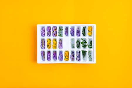 Ice cubes with yellow and purple flowers in a tray in the center of the frame on a yellow background Stockfoto