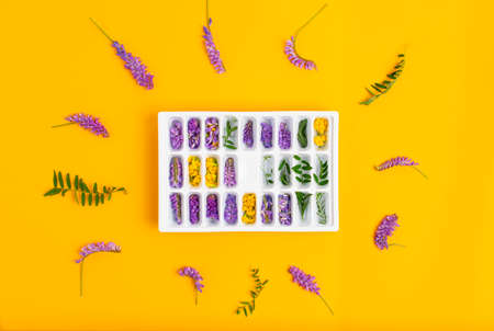 Ice cubes with yellow and purple flowers in a tray in the center of the frame on a yellow background. Flowers and green leaves lie in a circle Stockfoto