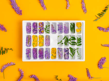 Ice cubes with yellow and purple flowers in a tray in the center of the frame on a yellow background. Flowers and green leaves lie in a circle Stok Fotoğraf