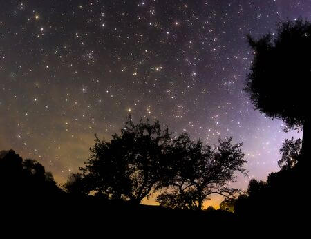 starry: Starry sky in the village, trees and sunset Stock Photo