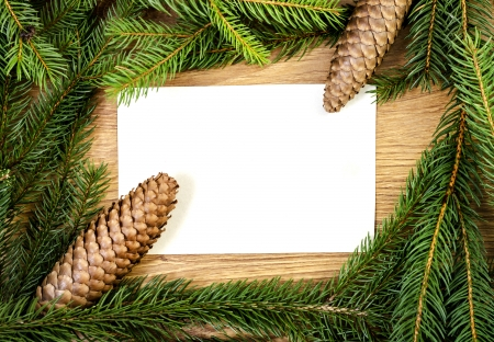 Christmas spruce frame for congratulations photo