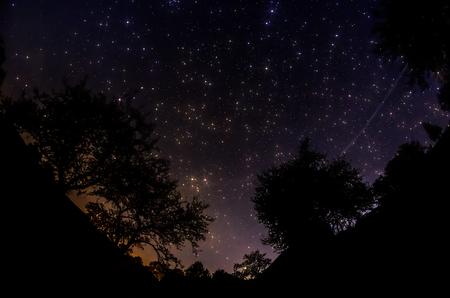 orion: Starry Sky
