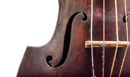stringed instrument: Part of old wooden violin stringed instrument. Classical music.