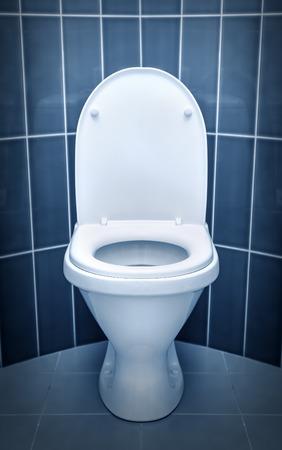 WC w łazience. Kontrasty w zimnych kolorach. Zdjęcie Seryjne