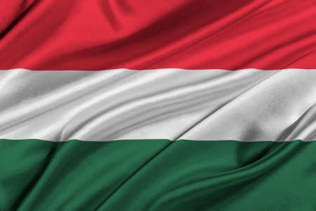 solemn: Flag of Hungary waving in the wind.