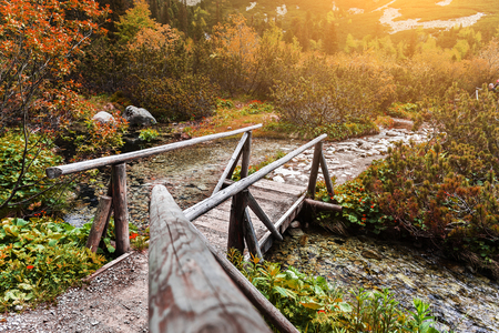 Wooden footbridge across stream in the mountain forest, High Tatras.