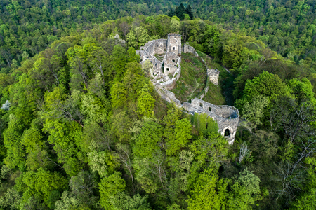 The ruins of a castle on a mountain covered by forest. Stock Photo