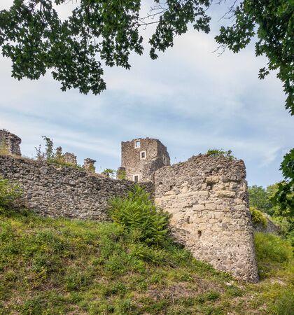The ruins of Nevitsky castle. Zdjęcie Seryjne