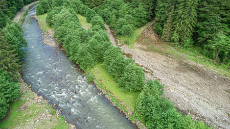 Forest and river from a birds eye view. Photo from the drone. 写真素材