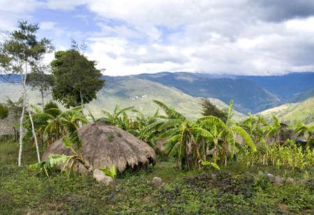 new guinea: Una capanna tradizionale in un villaggio di montagna indonesiano  Archivio Fotografico