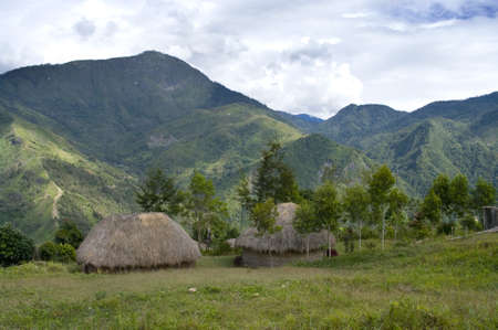 guinea: A traditional hut in an Indonesian mountain village