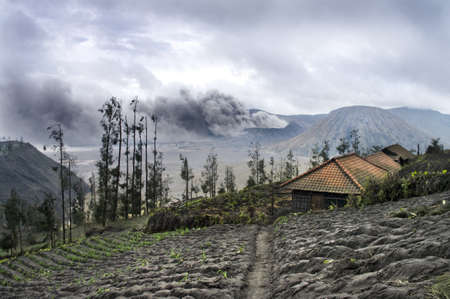 Mount Bromo volcano, Java. House on a foreground photo