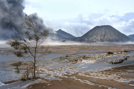 Mt. Bromo volcano, East Java, Indonesia  photo