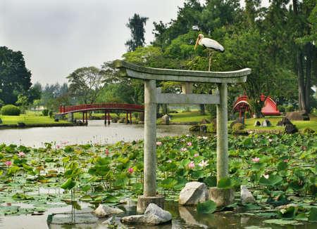 Japanese garden landscape  in Singapore photo