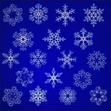 Snowflakes on dark background for your design Vector