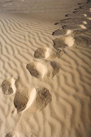 Footprints in the sand desert  photo