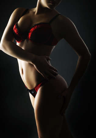 desnudo artistico: Moda foto de mujer hermosa en la ropa interior roja