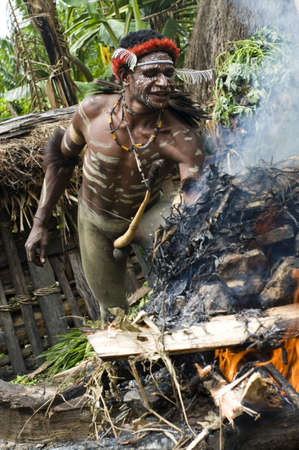 sektor: NEW GUINEA, INDONESIA -DECEMBER 28: Unidentified warrior of a Papuan tribe uses an earth oven method of cooking pig, in New Guinea Island, Indonesia on December 28, 2010  Editorial