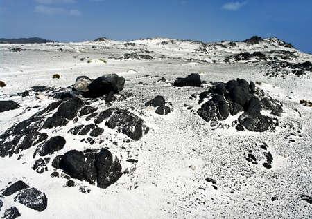 Landscape of Desert in Oman  photo