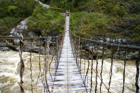 australia jungle:  The Rope bridge in New Guinea