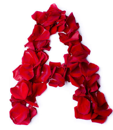 alphabet A made from red petals rose photo