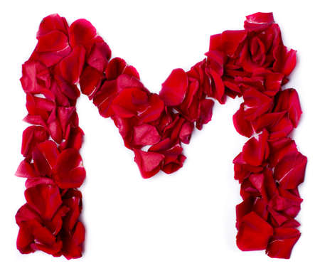 alphabet M made from red petals rose photo