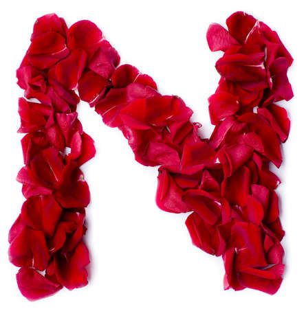 alphabet N made from red petals rose photo
