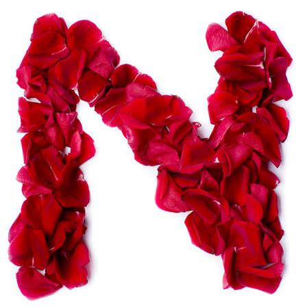 beautiful alphabet: alphabet N made from red petals rose