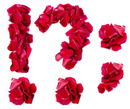 punctuation marks made from red petals rose photo