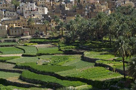 The village Bilad Sayt, sultanate Oman Stock Photo - 15286209