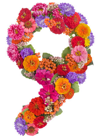number 9 made from flowers Stockfoto
