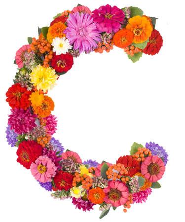 C, flower alphabet isolated on white Stock Photo - 15286187