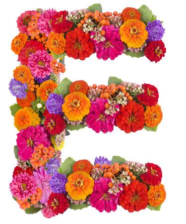 gerber flowers isolated on: E, flower alphabet isolated on white