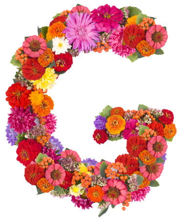 G, flower alphabet isolated on white  photo