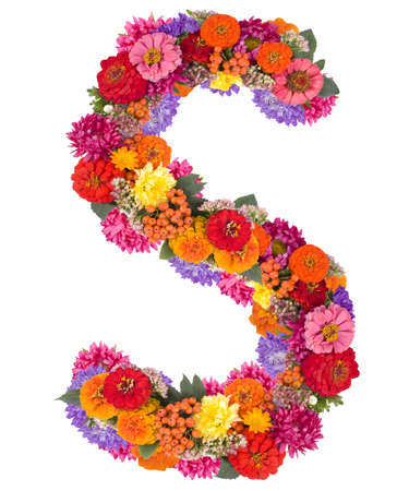 S, flower alphabet isolated on white  photo