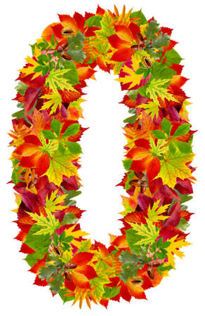 number 0 made from autumn leaves, isolated on white  photo