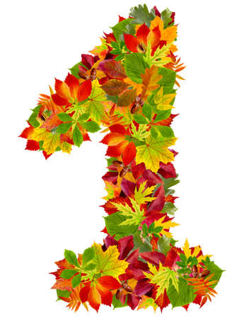 number 1 made from autumn leaves, isolated on white  photo