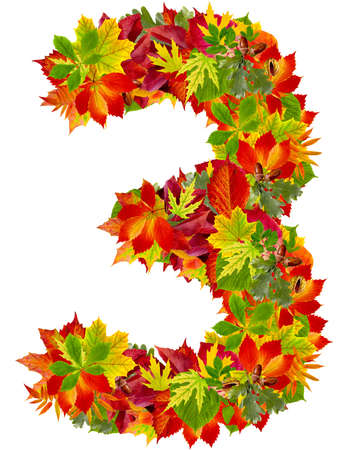 number 3 made from autumn leaves, isolated on white  photo