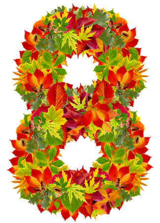 number 8 made from autumn leaves, isolated on white  photo