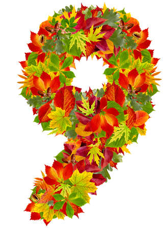 number 9 made from autumn leaves, isolated on white  photo