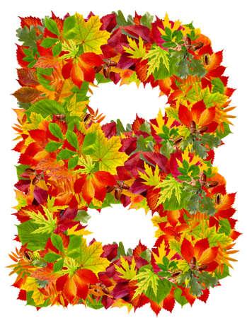 B, autumn alphabet isolated on white  Stok Fotoğraf