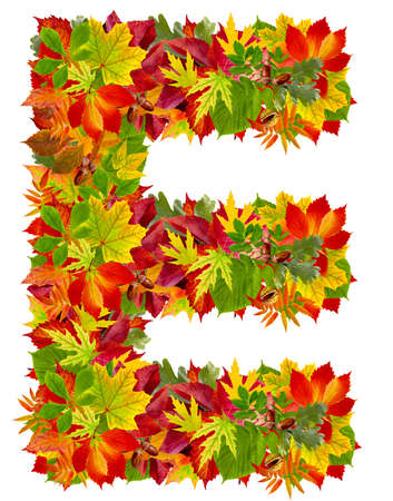 E, autumn alphabet isolated on white  Imagens