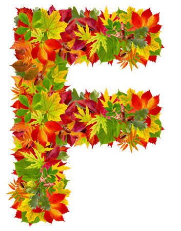 F, autumn alphabet isolated on white  photo
