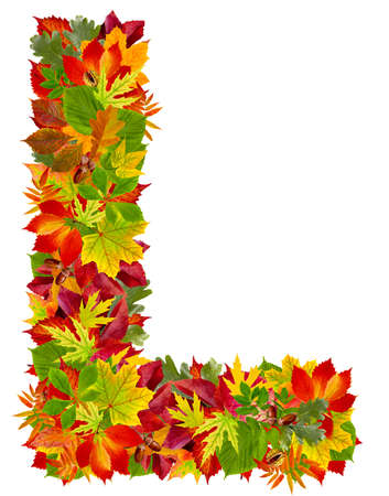 L, autumn alphabet isolated on white  photo