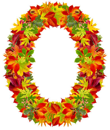 O は、白で隔離される秋のアルファベット