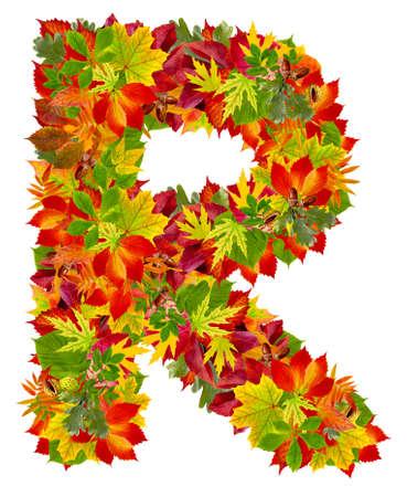r image: R, alfabeto autunno isolato su bianco